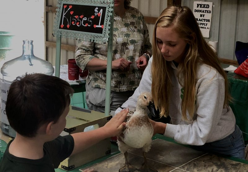 girl sharing pet duck at fair
